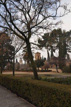 Sepia tones in winter.