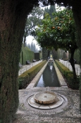 Alhambra pools: symmetry and mystery.