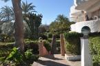 Beautiful gardens everywhere in Andalucia.