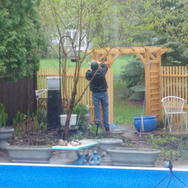 Glenn tied the gazebo down and I tied the gates open. Here's hoping for the best.